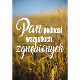 Plakat - Pan podnosi...