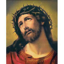 Obrazek 20x25 - Jezus cierniem ukoronowany