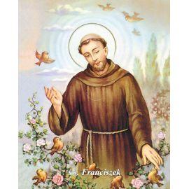 Obrazek 20x25 - Św. Franciszek