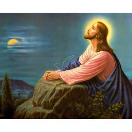 Obrazek 20x25 - Modlitwa w Ogrójcu