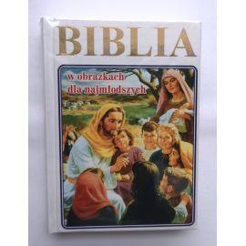 Biblia dla młodych