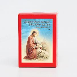 Puzzle religijne dla dzieci 40 elementów (20)