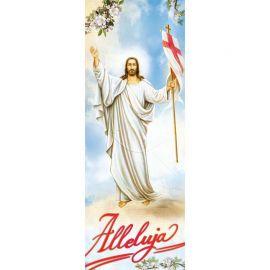 Baner Wielkanocny (20)