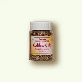 Kadzidło Galilea Gold - 20 g