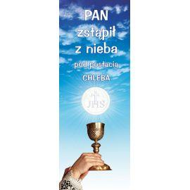 Baner Boże Ciało (56)
